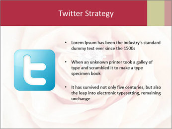 Wedding pink rose PowerPoint Templates - Slide 9