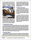 0000087265 Word Template - Page 4