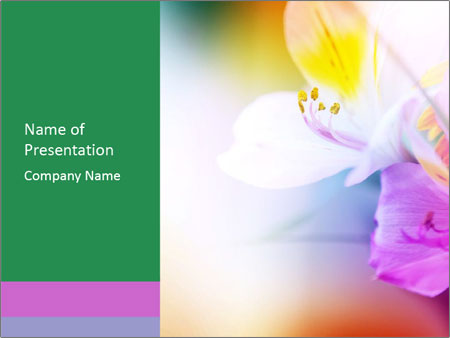 Flowers with color filters PowerPoint Templates