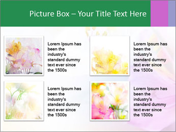 Flowers with color filters PowerPoint Templates - Slide 14