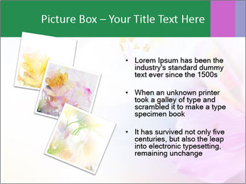 Flowers with color filters PowerPoint Templates - Slide 17