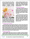0000087268 Word Template - Page 4