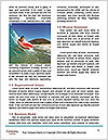 0000087270 Word Template - Page 4