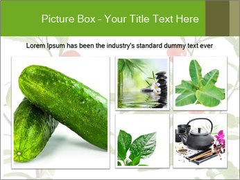 Home plant PowerPoint Templates - Slide 19