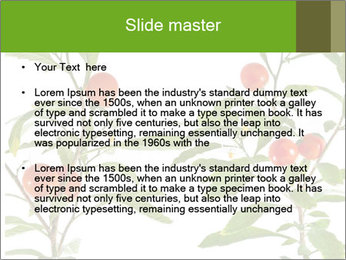 Home plant PowerPoint Templates - Slide 2
