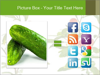 Home plant PowerPoint Templates - Slide 21