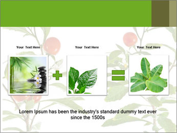 Home plant PowerPoint Templates - Slide 22