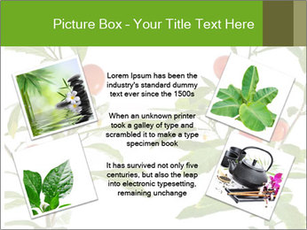 Home plant PowerPoint Templates - Slide 24