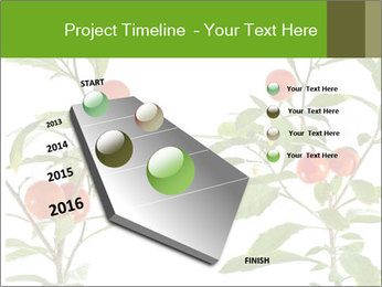 Home plant PowerPoint Templates - Slide 26