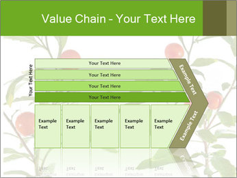 Home plant PowerPoint Templates - Slide 27