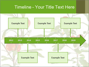 Home plant PowerPoint Templates - Slide 28