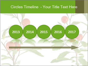 Home plant PowerPoint Templates - Slide 29
