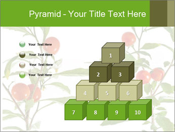 Home plant PowerPoint Templates - Slide 31
