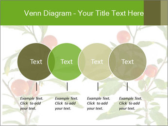 Home plant PowerPoint Templates - Slide 32