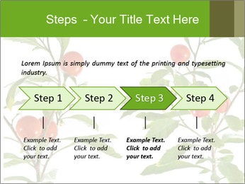 Home plant PowerPoint Templates - Slide 4
