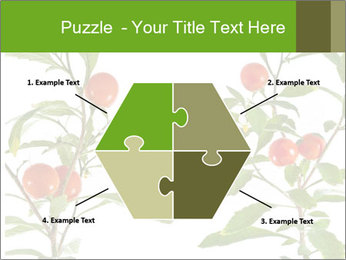 Home plant PowerPoint Templates - Slide 40