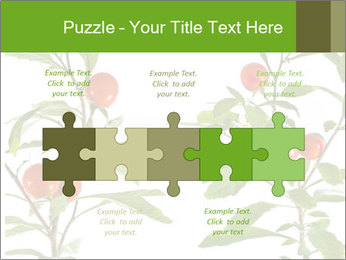 Home plant PowerPoint Templates - Slide 41