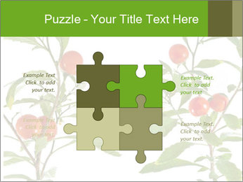 Home plant PowerPoint Templates - Slide 43