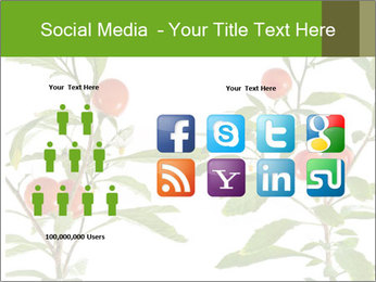 Home plant PowerPoint Templates - Slide 5