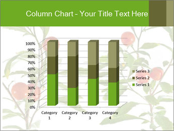 Home plant PowerPoint Templates - Slide 50