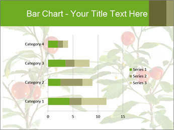 Home plant PowerPoint Templates - Slide 52