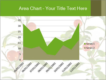 Home plant PowerPoint Templates - Slide 53