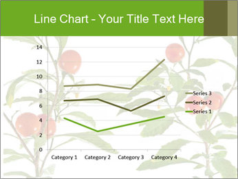 Home plant PowerPoint Templates - Slide 54