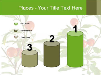 Home plant PowerPoint Templates - Slide 65