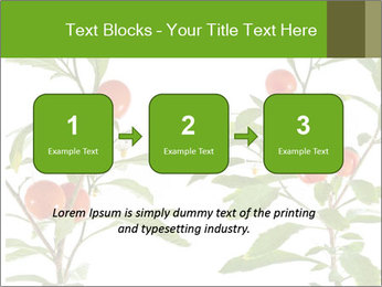 Home plant PowerPoint Templates - Slide 71