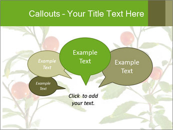 Home plant PowerPoint Templates - Slide 73