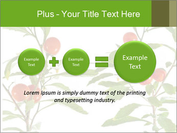 Home plant PowerPoint Templates - Slide 75