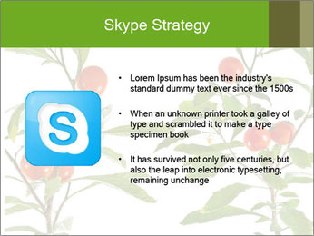 Home plant PowerPoint Templates - Slide 8
