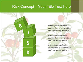 Home plant PowerPoint Templates - Slide 81