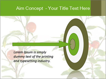 Home plant PowerPoint Templates - Slide 83