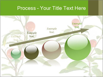 Home plant PowerPoint Templates - Slide 87