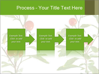 Home plant PowerPoint Templates - Slide 88