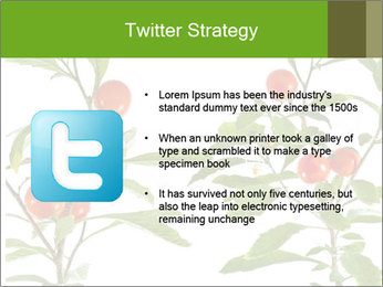 Home plant PowerPoint Templates - Slide 9
