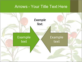 Home plant PowerPoint Templates - Slide 90