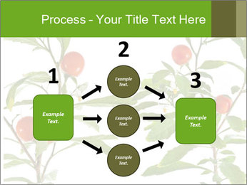 Home plant PowerPoint Templates - Slide 92
