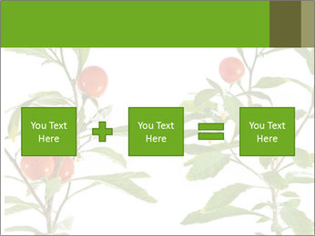 Home plant PowerPoint Templates - Slide 95