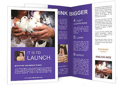 0000087282 Brochure Template