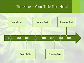 Young cannabis PowerPoint Templates - Slide 28