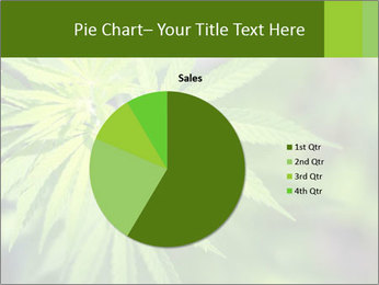 Young cannabis PowerPoint Template - Slide 36