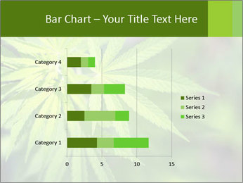 Young cannabis PowerPoint Templates - Slide 52