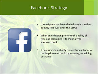 Young cannabis PowerPoint Templates - Slide 6
