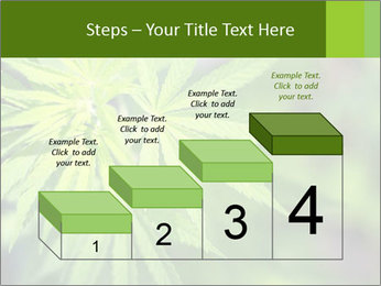 Young cannabis PowerPoint Template - Slide 64