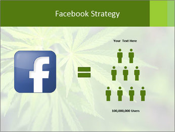 Young cannabis PowerPoint Templates - Slide 7