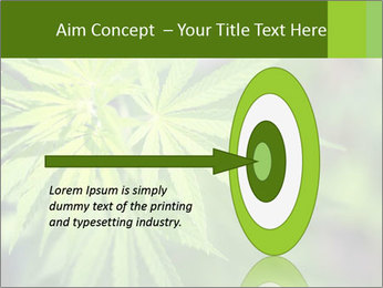 Young cannabis PowerPoint Template - Slide 83