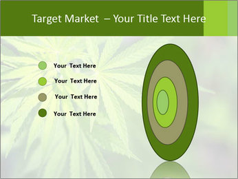 Young cannabis PowerPoint Template - Slide 84