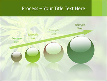 Young cannabis PowerPoint Template - Slide 87